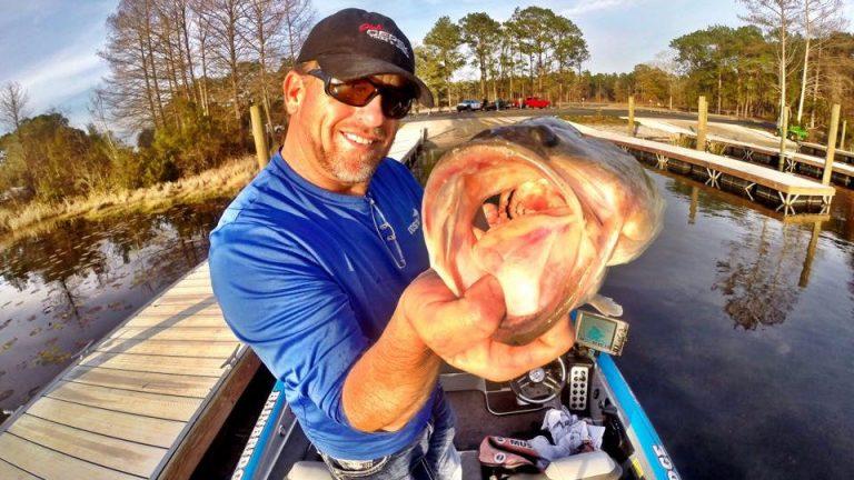 Lake Seminole Bass Fishing